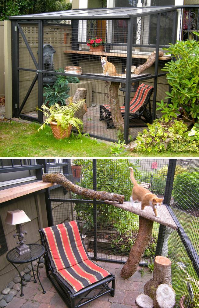 catios-cat-patios-outdoor-enclosures-1-5cf62b1fe166d__700