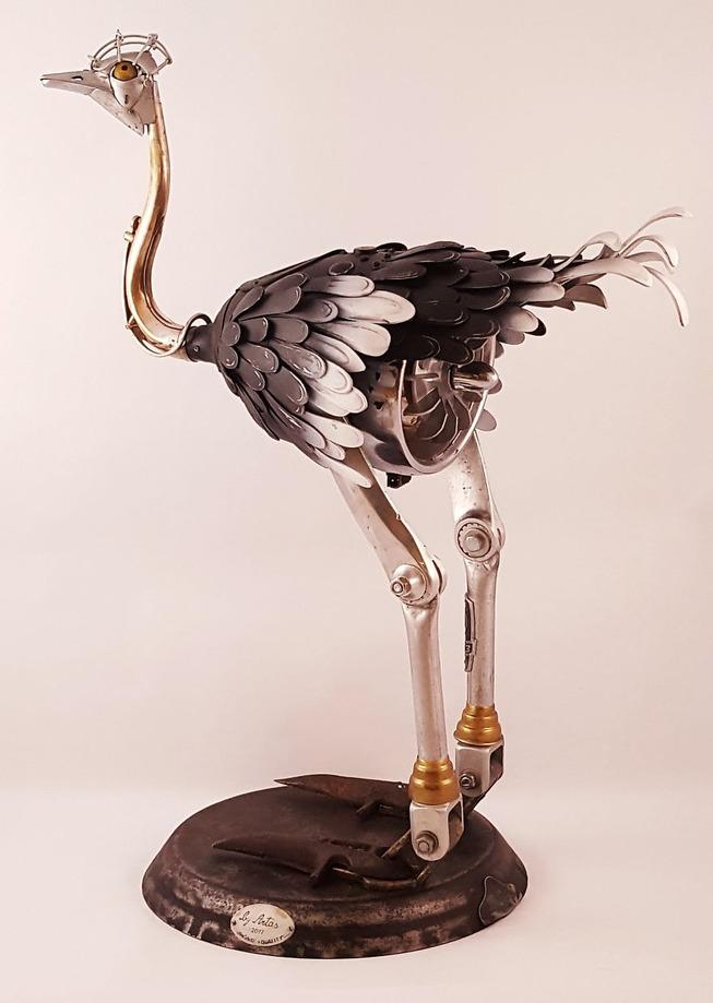 ostrich-16-5a6ed89e6b52d__880