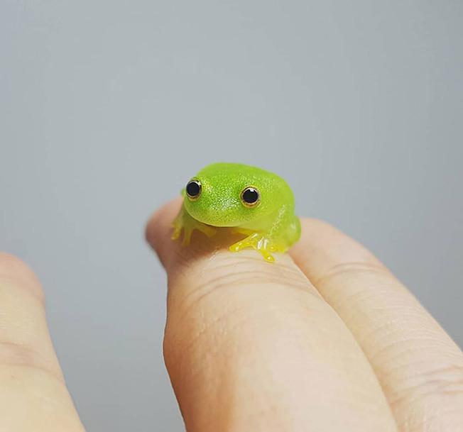 cute-tiny-finger-animals-10-5f8456f7754da__700