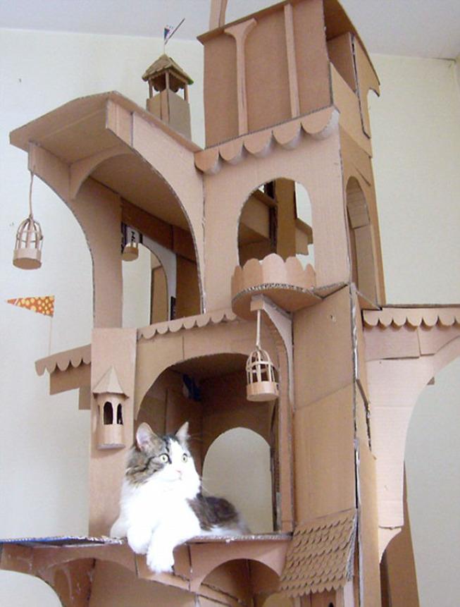 cats-cardboard-forts-1-5f2cf2cc29267__700