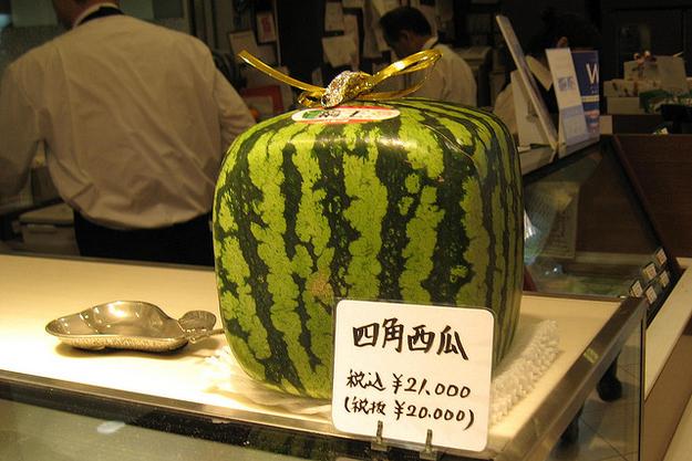 メロンの価格 日本「5000円」 海外「1ドル」