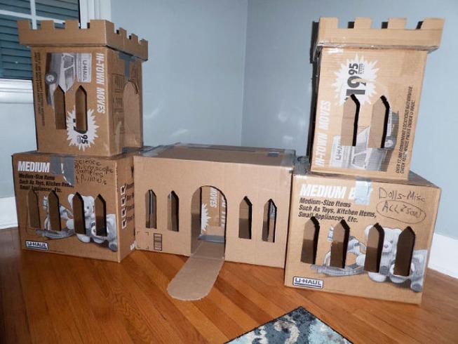 cats-cardboard-forts-15-5f2cf2e319852__700