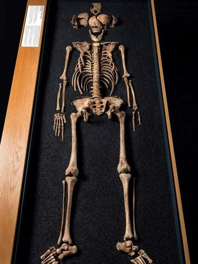 skeleton-lant-street-teenager-museum-london