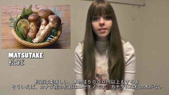 日本の野菜事情 海外の反応 (16)