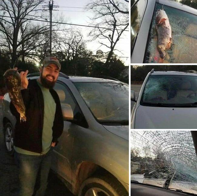 car-owners-having-bad-day-2-5fb62bf0efbd5__700