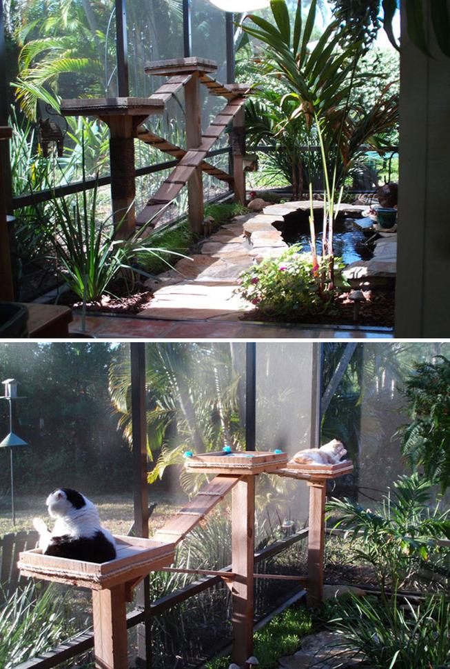 catios-cat-patios-outdoor-enclosures-11-5cf6320118dd9__700