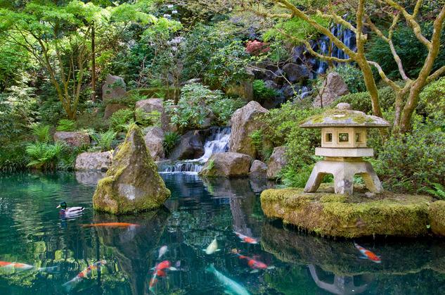 japanese-garden-koi-pond1