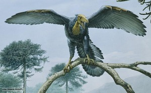 archaeopteryx_1