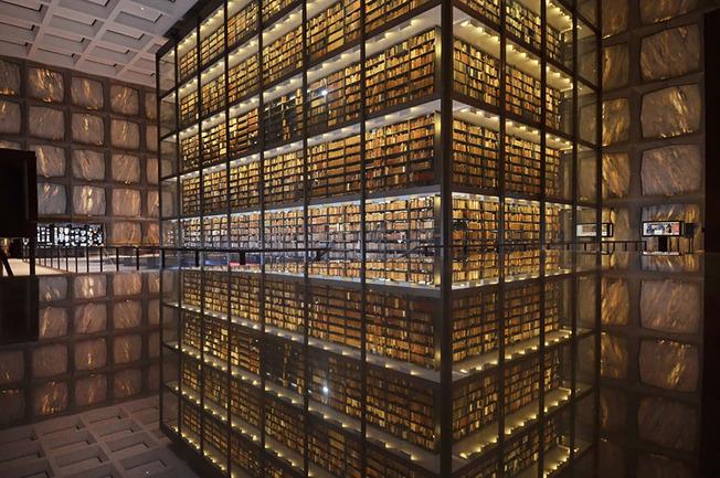 amazing-libraries-1__880 (1)