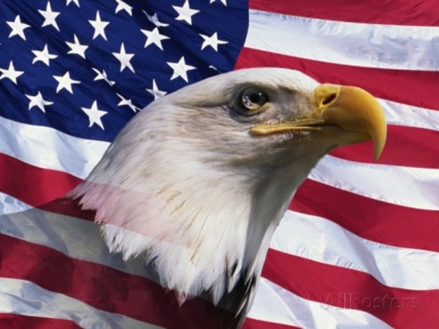 joseph-sohm-bald-eagle-and-american-flag