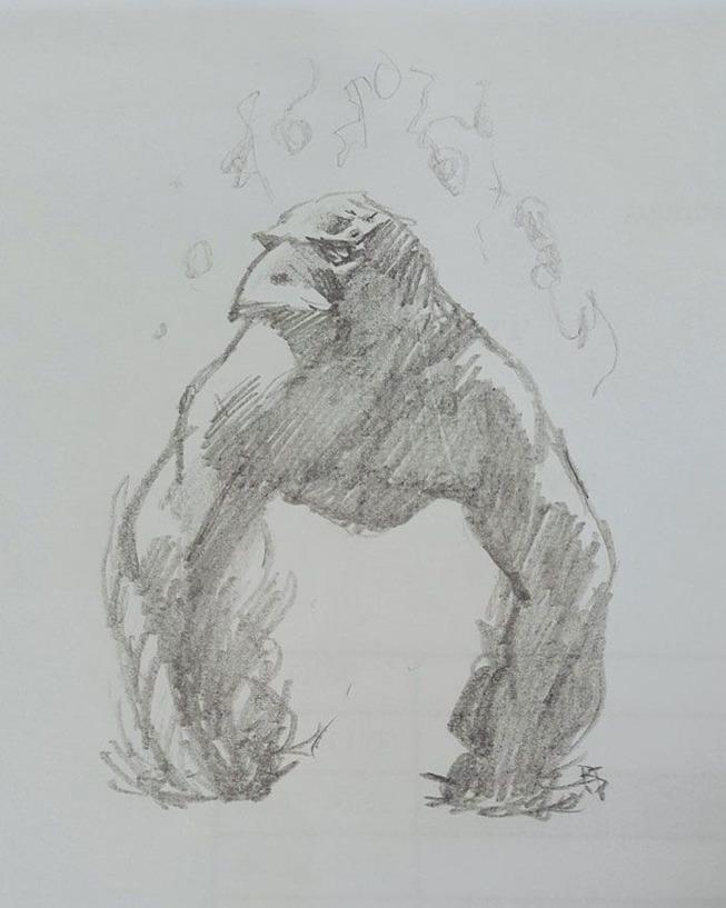 strange-crow-reactions-5d1076d3ce370__700
