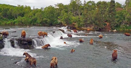 Ultimate-Alaska-1-Brooks-Falls