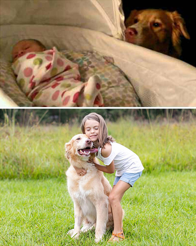 dogs-growing-up-with-owners-194-6020fd8e00bfe__700