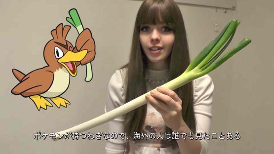 日本の野菜事情 海外の反応 (4)