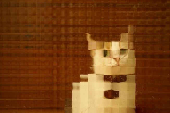 pixel-cat-18-5d9f1f5401e6e__700