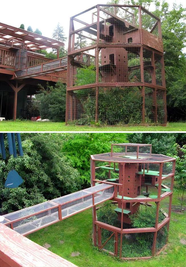 catios-cat-patios-outdoor-enclosures-39-5cf8c0d8e8941__700