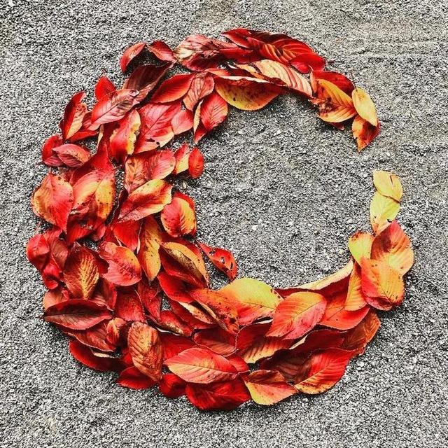 fallen-leaf-art-japan-7-585117cdcb141__700 (1)