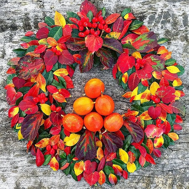 fallen-leaf-art-japan-22-585117f3a01c8__700