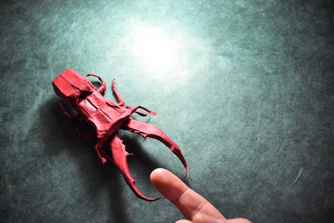 origami-gonzalo-garcia-calvo-121-57fb5683b7027__880