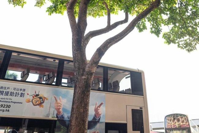 street-photography-edas-wong-9-5fc5f4d38b005__700