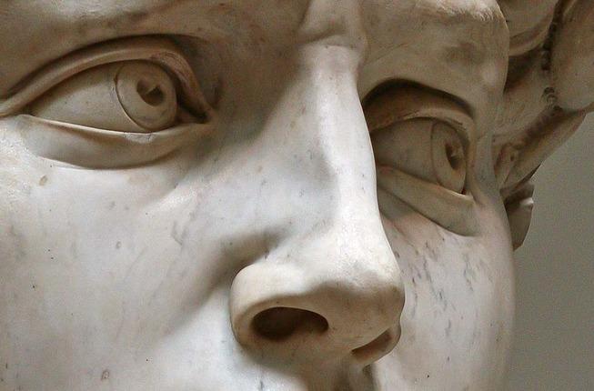 david-nose-detail