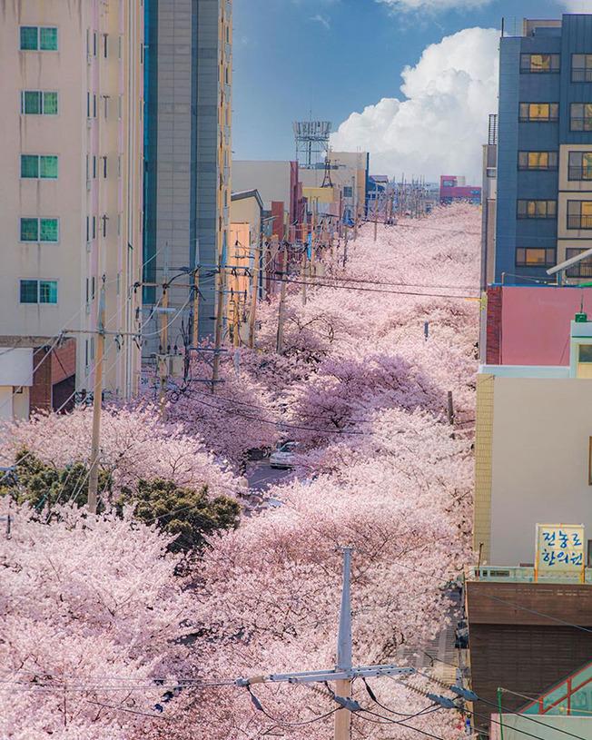 interesting-south-korea-215-61274cf9d83a6__700