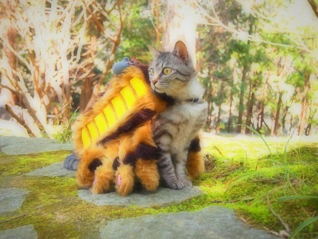 cats-anime-costumes-yagyouneko-3-5f48c15c0b119__700
