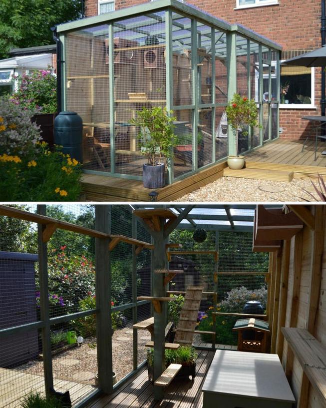 catios-cat-patios-outdoor-enclosures-15-5cf6359e64db7__700