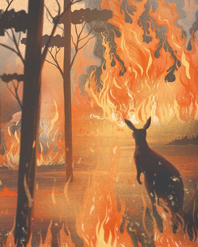 tribute-art-to-australian-bushfires-5-5e1c2e962961c__700