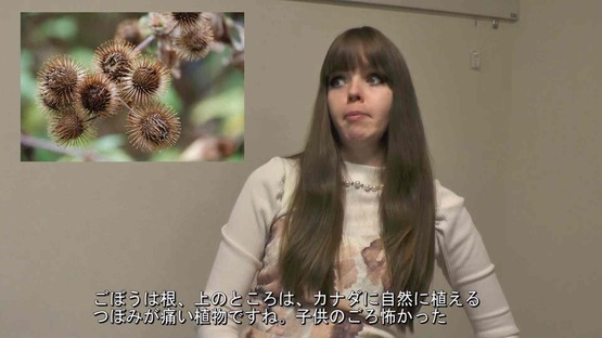 日本の野菜事情 海外の反応 (8)