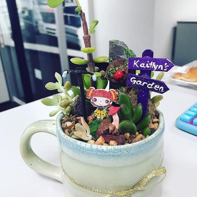 adorable-mini-tea-gardens-5e984c1f5a214__700