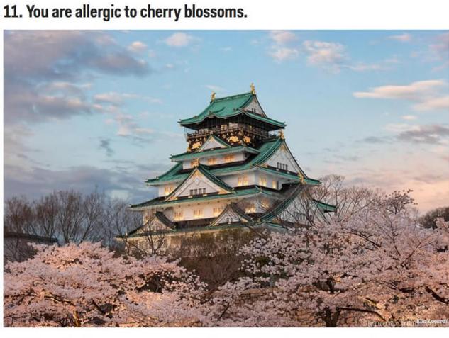 日本旅行をすべきではない理由