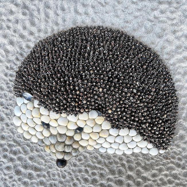 animals-from-seashells-art-anna-chan-60d3192405dd2__700