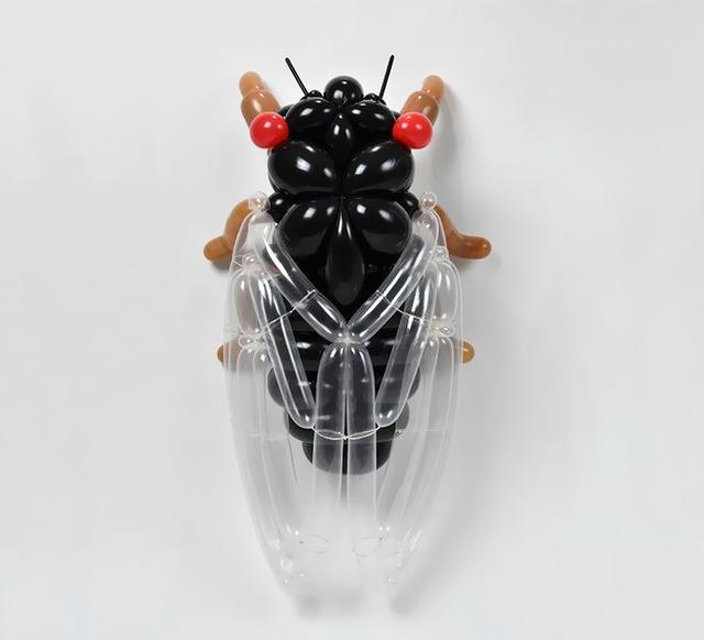 balloon-art-masayoshi-matsumoto-japan-106-592e9fa59ac98__700 (1)