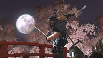ninja_gaiden_2_wallpaper_sakura