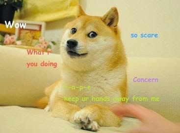 Doge_first
