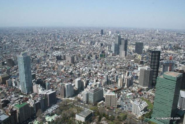 normal_tokyo_metropolitan_building_IMG_1874