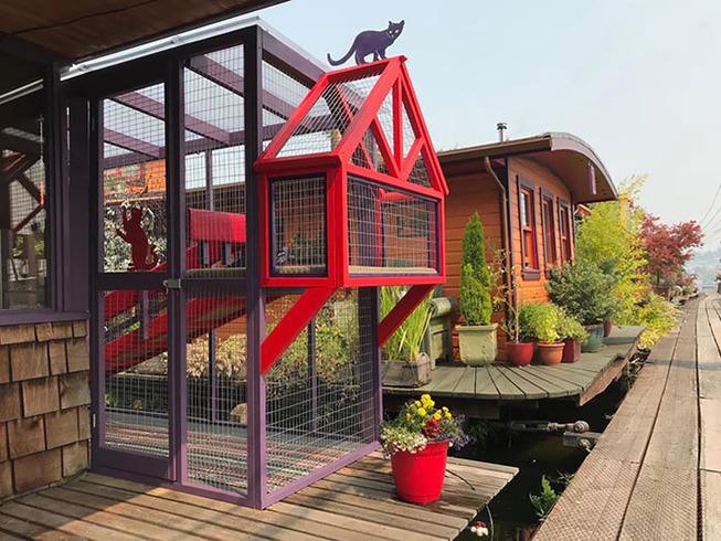 catios-cat-patios-outdoor-enclosures-3-5cf6251ee7d97__700