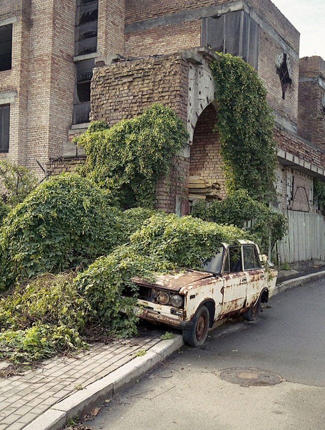 nature-reclaiming-civilization-509-603cfb19657e5__700