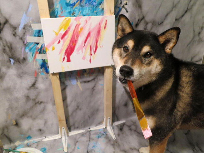 shiba-inu-paints-abstract-art-hunter-9-5c25dc92d43a1__700 (1)