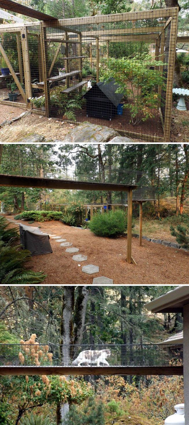 catios-cat-patios-outdoor-enclosures-40-5cf8f80d571c4__700