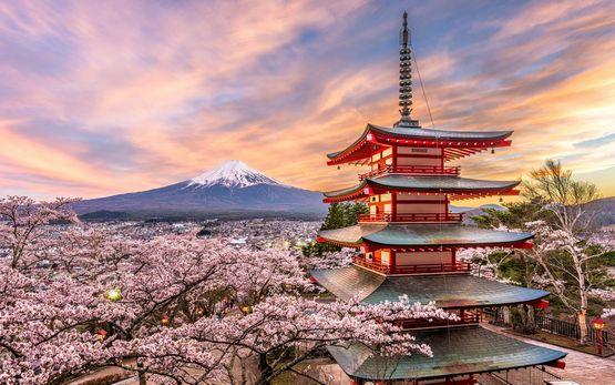 Mt-Fuji-iStock-876560704