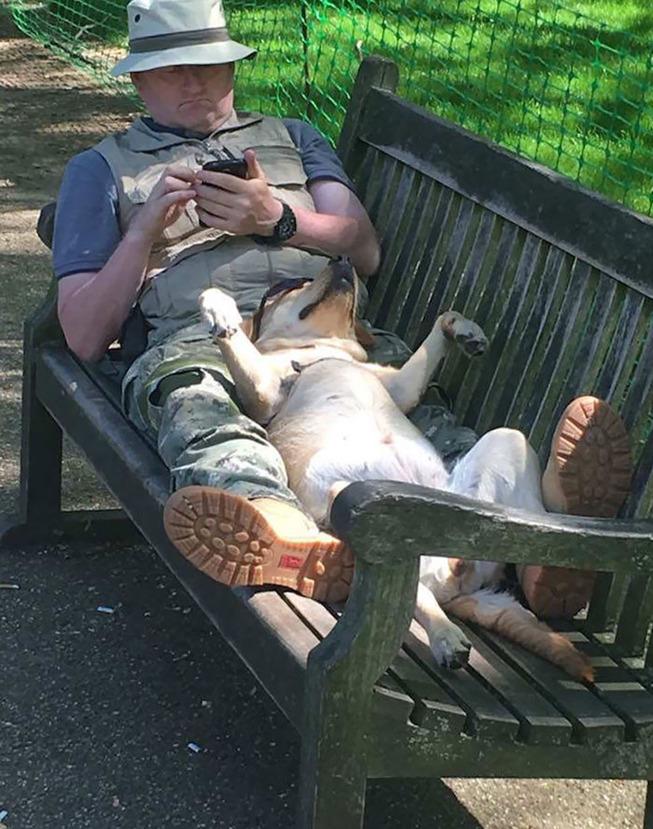 funny-dog-sleeping-positions-18-5d5f8f7869da7__700