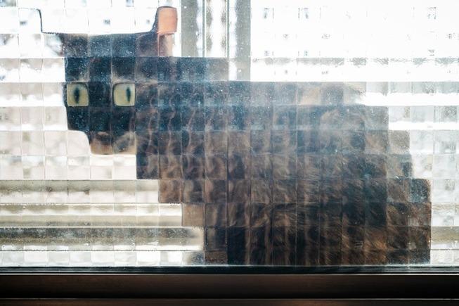 pixel-cat-5-5d9ecfb54f878__700