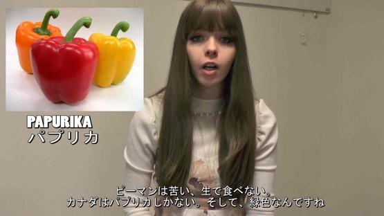 日本の野菜事情 海外の反応 (14)