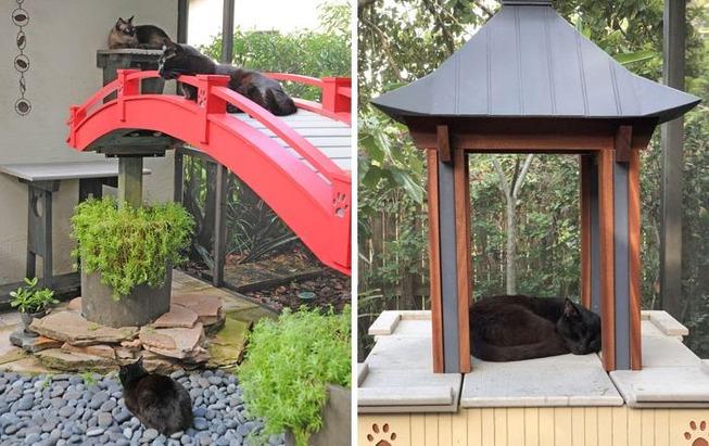 catios-cat-patios-outdoor-enclosures-10-5cf630f29e82c__700