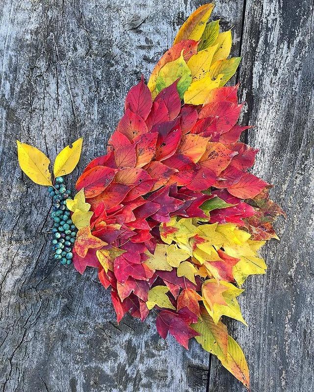 fallen-leaf-art-japan-23-585117f5cdcd8__700