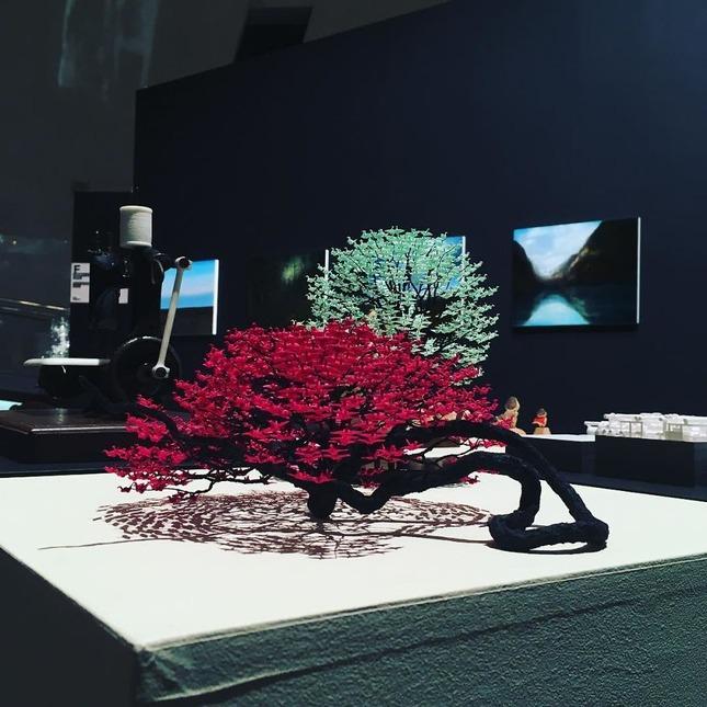 origami-cranes-bonsai-trees-naoki-onogawa-7-5943cbc791733__880