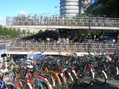 Amsterdam-Cycling-1