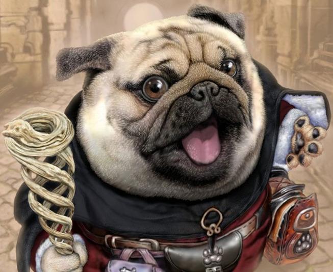 dog-cat-knights-art-ponkichi-6-5e0c908a3d4df__700